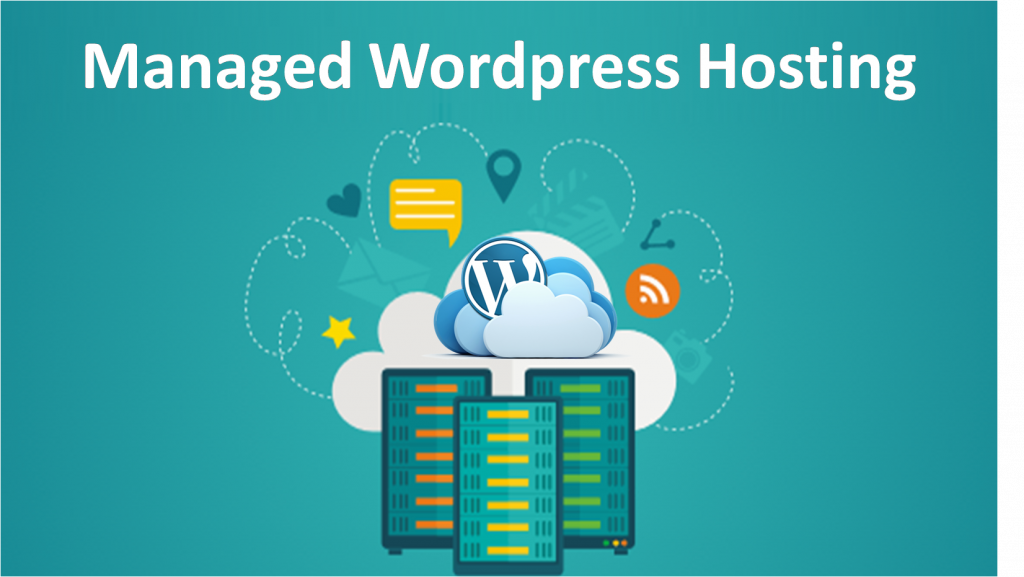 Expect From WordPress Hosting As a Non-Developer